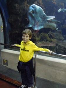 acquario barcellona