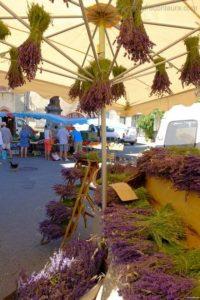sault provenza