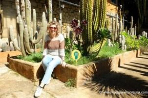 giardino esotico pallanca bordighera (1)
