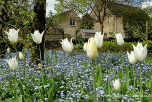 barnsley house cirencester cotswolds