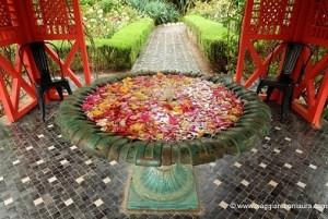 andrè heller garden marrakech anima garden