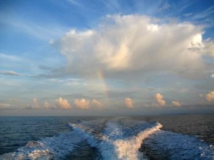 Indonesia - Walea Island
