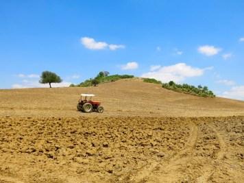 Dittaino - Lavorazione dei campi