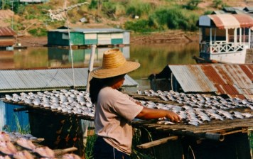 Thailand - Scene di vita lungo il Mekong