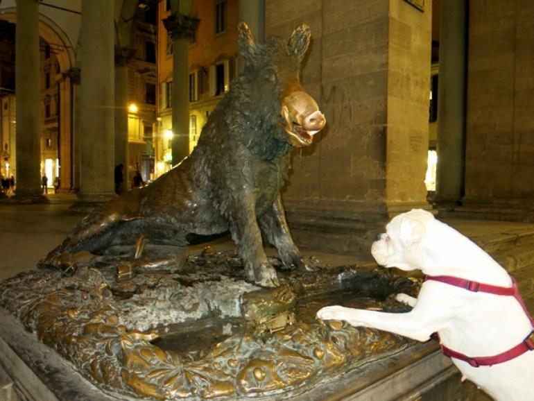 Firenze - Fontana del Porcellino