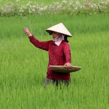 Viaggio in Vietnam – Il penultimo Paese dell'Indocina