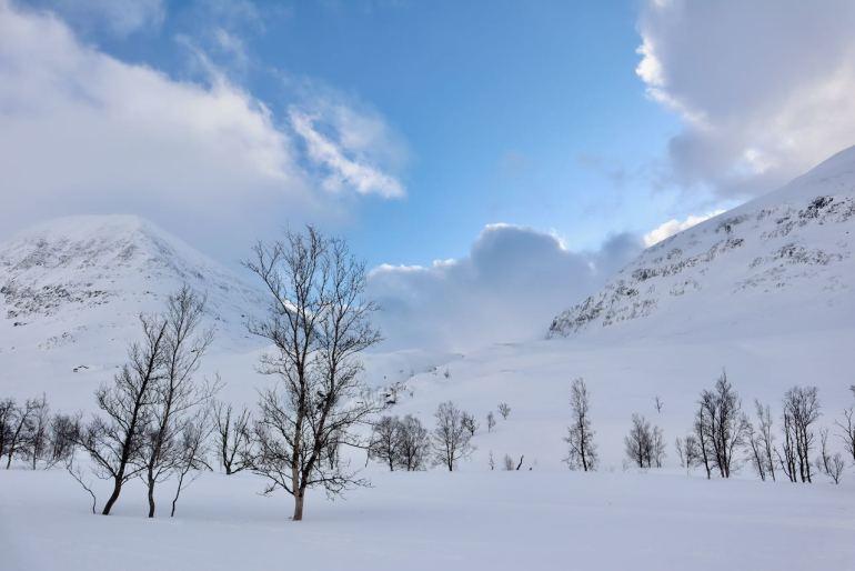 Monte Tamok Tromso