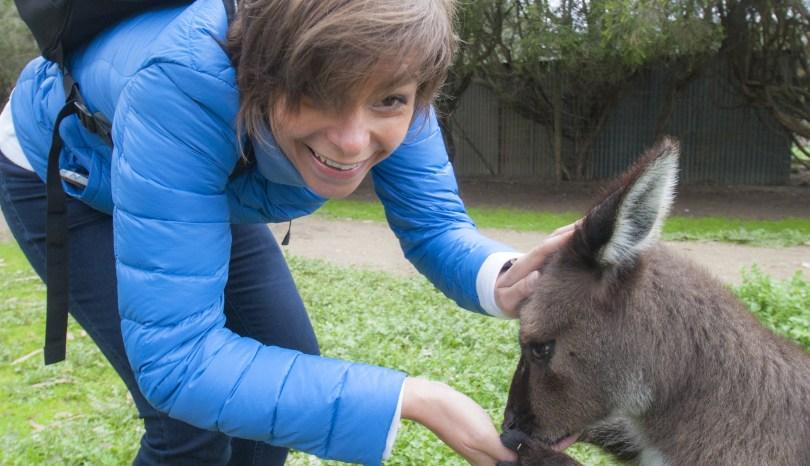 Australia: come coccolare… un canguro (e un koala)!