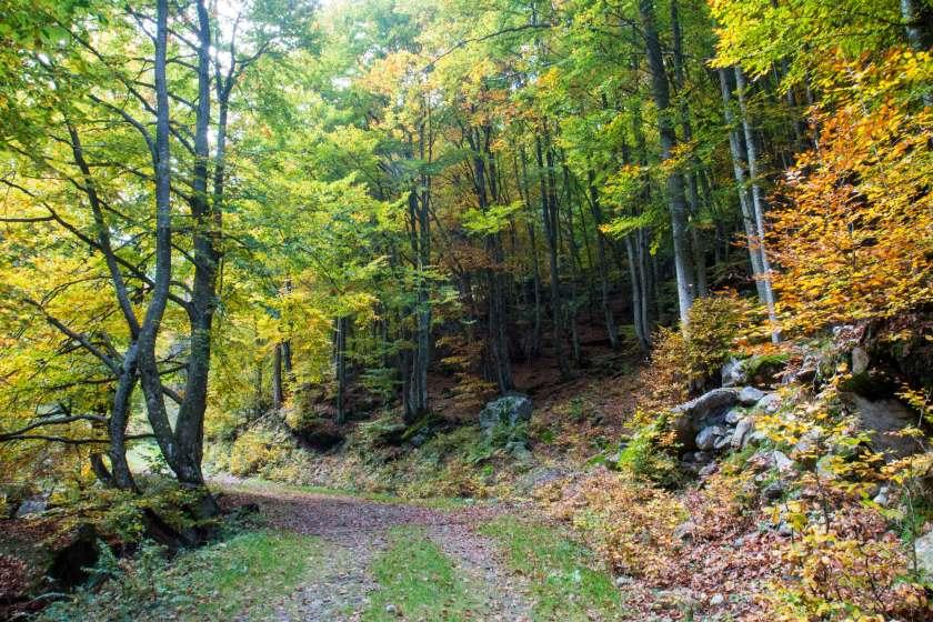 val-bodengo-autunno