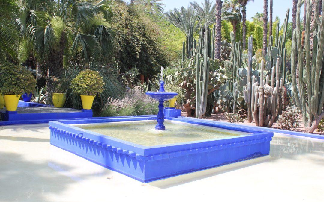 Buon gusto e frescura ai Jardin Majorelle di Marrakech