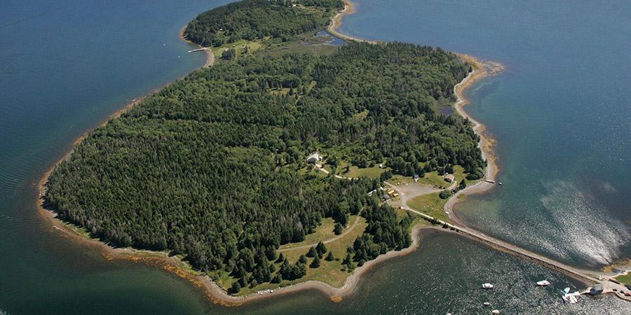Caccia al tesoro nel pozzo di Oak Island