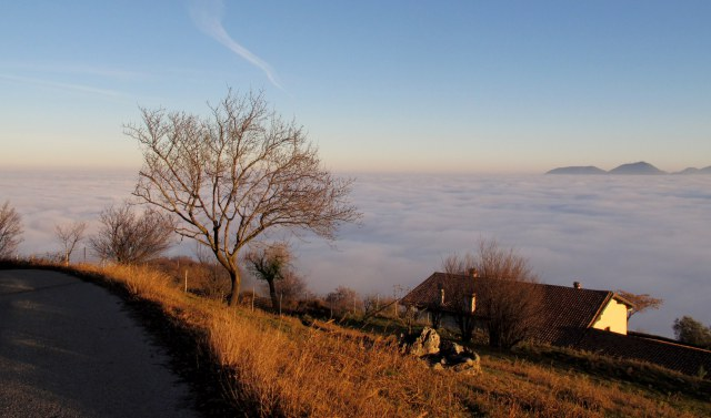 escursioni-colli-berici-nebbia