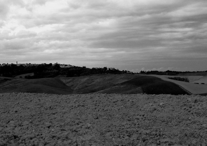 le-colline-attorno-a-lajatico