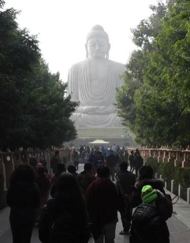 2020 Buddha trai233 lav