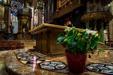Organo-del-Duomo-di-Milano-2019-©-Renato-Corpaci-6