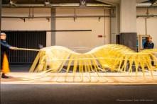 Theo Jansen, ANIMARIS UMINAMI Bruchum, Periodo dei Centopiedi 2016 – oggi. Questa creatura è la più leggera della sua famiglia. I segmenti triangolari attaccati alle spine si espandono e si contraggono mentre cammina. L'evoluzione ha comportato alcuni aggiustamenti alla struttura. In Giappone il suo movimento è stato paragonato a quello delle onde [umi] del mare [nami], da cui il nome.
