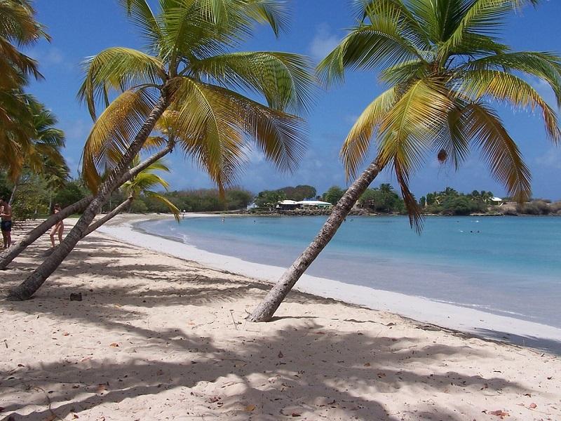 Guida Martinica