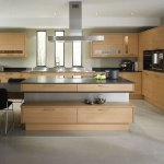 Contemporary Kitchen Cabinets Marvelous House