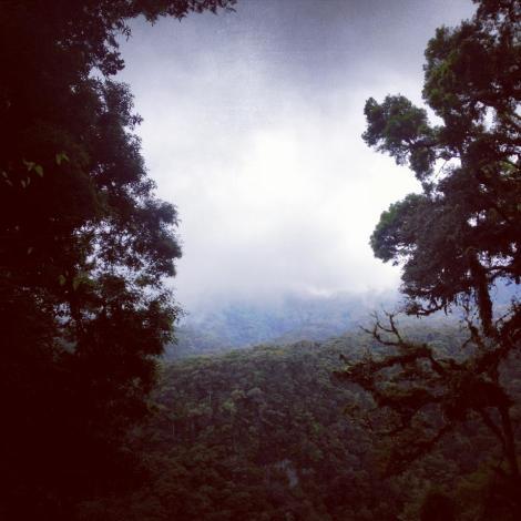 Panama by Sonsoles lozano