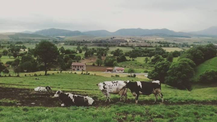 camino-de-santiago-camino-primitivo-asturias-sonsoles-lozano-6