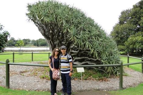 Jardín Botánico de Sydney con Carolina