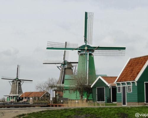 De gekroonde Poelenburg (molino de aserrar), De Kat (molino de pintura) y De Zoeker (molino de aceite)