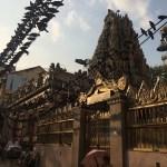 Palomas en el templo Shri Kali