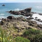Aunque parecen sólo rocas, al observar con detenimiento empezamos a ver decenas de focas