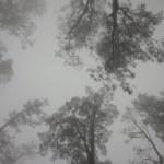 El ascenso el primer día, lloviendo y con neblina