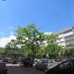 Kota Kinabalu es una ciudad mediana y organizada
