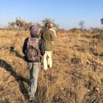En el safari caminando teníamos que ir en silencio y en formación