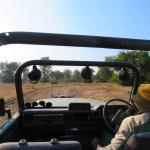 Nuestro carro de safari