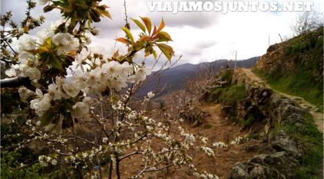 Rutas por el Valle del Jerte