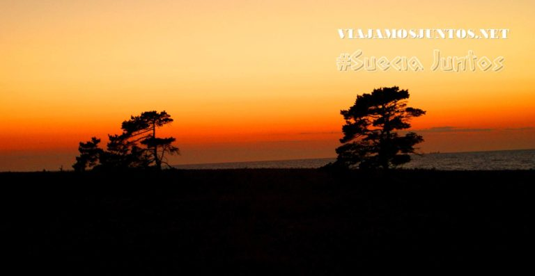 Suecia, naturaleza, viajar por libre, vistas, paisajes, inspiración, información práctica, tips, consejos, viajar por libre, alojamiento, diario, viajar en coche, Gotland