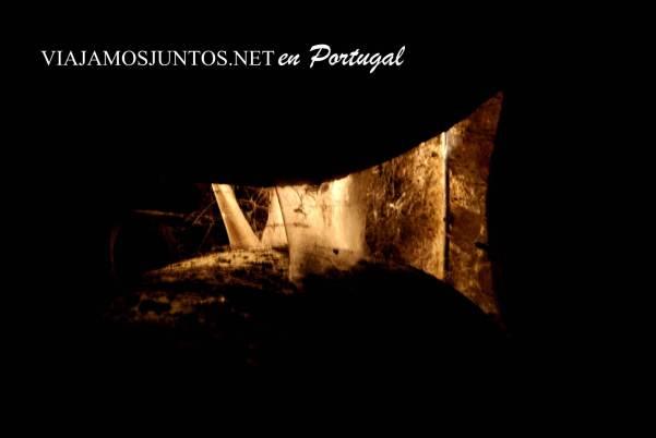 Arañas y sus redes en la oscuridad