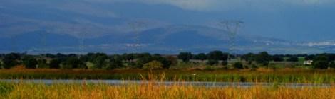 El parque ornitológico de Arrocampo, Parque Nacional de Monfragüe y la Reserva de la Biosfera de Monfragüe, Extremadura