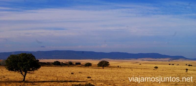 Atravesando el Valle de Alcudia Descubriendo el Edén de la Mancha, el parque natural del Valle de Alcudia y Sierra Madrona