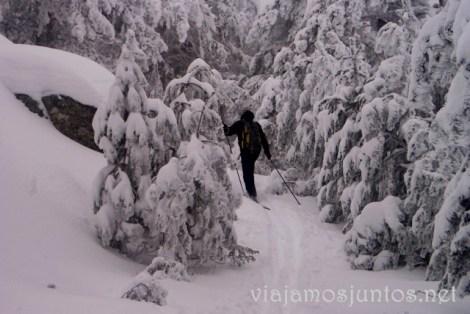 Camino Schmid en invierno Ruta de las cascadas, Navacerrada, Sierra Guadarrama, Madrid. Nieve, río, cascaditas, vistas panorámicas