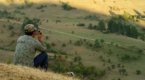 """""""Cazando"""" La berrea del ciervo y la ronca del gamo en la Serranía de Cuenca, Castilla-La Mancha"""
