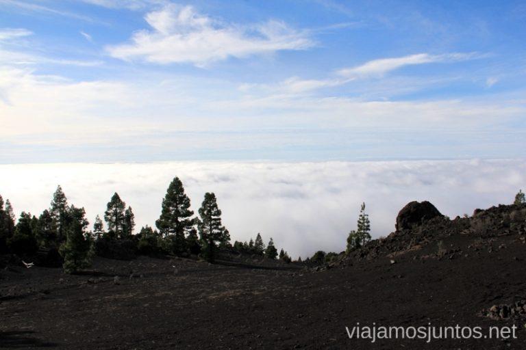 Mirador de los Llanos de Jable, la Palma, Islas Canarias Que hacer en la Palma, 4 actividades muy top