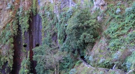 Los túneles y los Nacientes de la Ruta de los Nacientes de Marcos y Cordero, la Palma, Islas Canarias