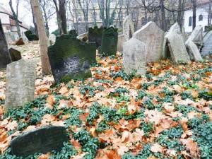 Antiguo-Cementerio-Judío-01