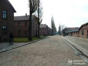 Auschwitz-09