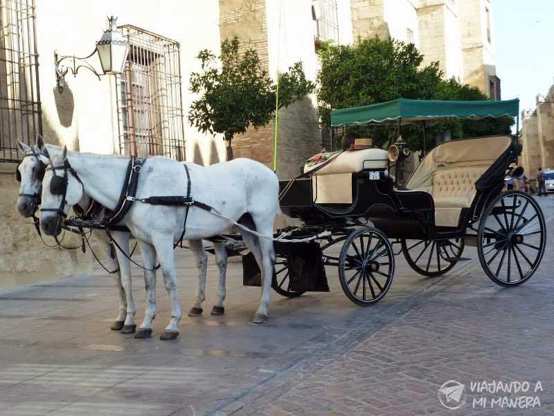 10 lugares que no te puedes perder en Córdoba