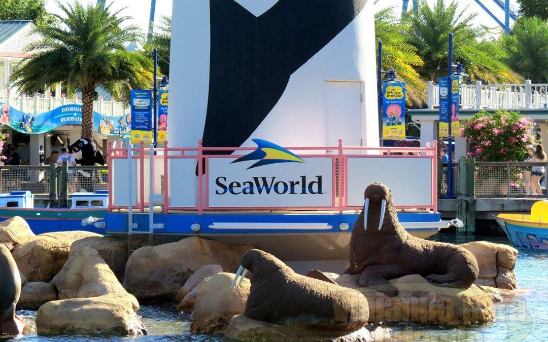 SeaWorld Orlando irá reabrir oficialmente no dia 11 de junho