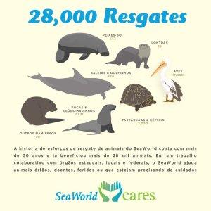 SeaWorld Parks & Entertainment atinge o marco histórico de 28 mil animais resgatados