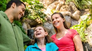 Discovery Island Trails