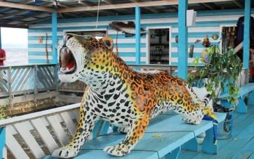 artesanato-amazonas-5