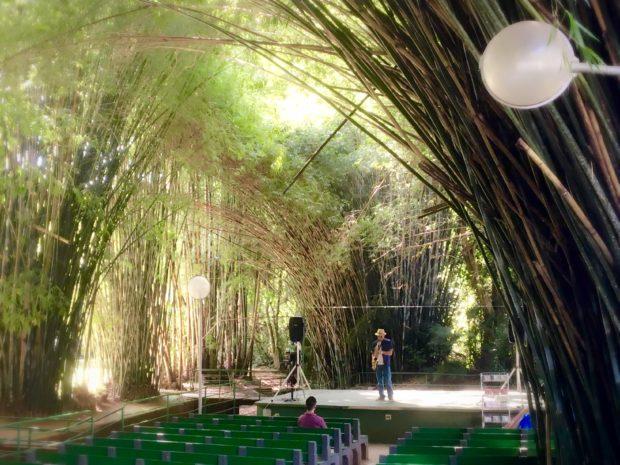 Apresentação de saxofone na Catedral de Bambu
