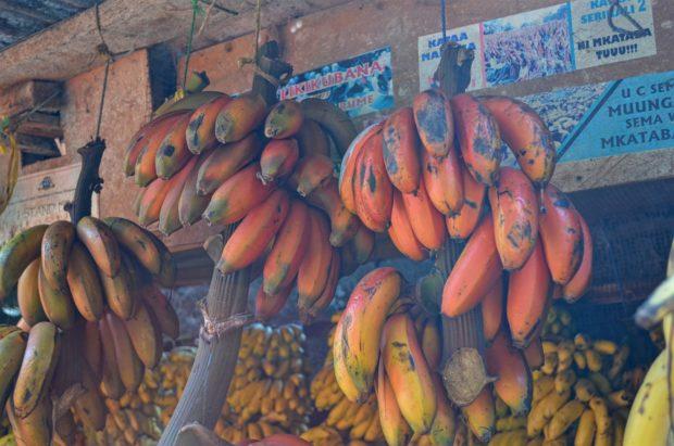 Mercado em Stone Town - Zanzibar